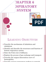 Chapter 6_respiratory Systemj