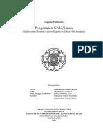 Laporan Praktikum Komputasi Fisika