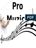 Pro Muzica
