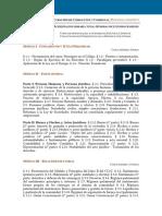 Programa Analítico Curso Online