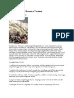 Penanggulangan Bencana Tsunami
