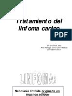 Tratamiento Linfoma Canino