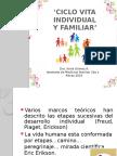 Ciclo Vital Individual y Familiar- Clase Uv San Felipe