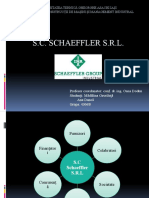 prezentare shaeffler