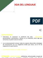 Patologia Del Lenguaje-COMENTADA