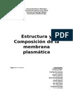 Estructura y Composición de La Membreana Finl