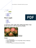 All about apples.pdf