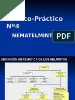 Diapositivas Helmintos - Nematelmintos
