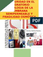 Practica Nº1 Fisiologia de La Membrana Semipermeable