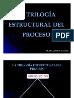 trilogaestructuraldelproceso MB.pdf