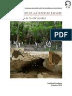 Murciélagos de Las Cuevas de Taulabe