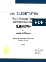 leadership dsosn certificate