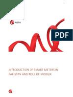 Smart Meter.pdf