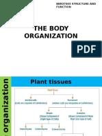 THE BODY ORGANIZATION.pptx