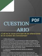 CUESTIONARIO - EmbriologÃ-A ( Jessenia Bastidas Ticse)