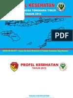 19 Profil Kes.prov.NTT 2012