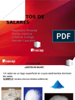 salares.pptx
