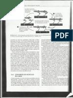 CARNES - Xerox Do Livro Química de Alimentos de Fennema- Página 1