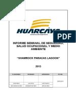 153012411-Informe-Semanal-de-Seguridad-y-Salud-Ocupacional.docx