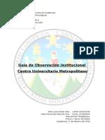 Guia de Observacion Instituvional