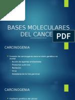 Bases Moleculares Del Cancer