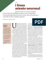 2 - Contra El Freno Del Crecimiento Neuronal