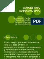 Auto Concept o