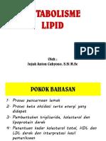 Lipid Gizi