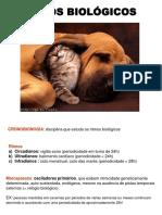 aula19.sono_vigilia.pdf
