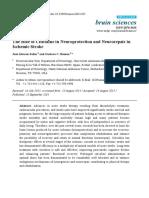 Su_role Citicoline Neuroprotection