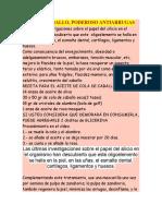 COLA DE CABALLO Y CLORURO DE MAGNESIO.doc