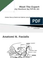 Anatomi Nervus Fasialis Beserta Fungsi, Kelainan Yang Mungkin Terjadi Serta Pemeriksaannya.
