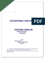 Biologie_referat Ecosistem Antropizat_Pestera Ursilor