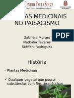 Plantas Medicinais No Paisagismo Slide
