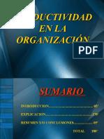 Productividad en La Organizacion