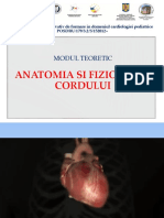 1.Anatomia Si Fiziologia Corduluii