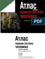 Атлас нервной системы человека