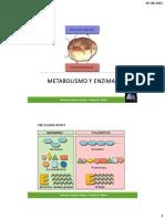 Metabolismo y Enzimas