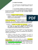 HERMENEUTICA CONSTITUCIONAL.docx