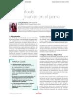 Dermatosis Autoinmune en Perros