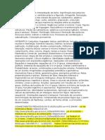 LÍNGUA PORTUGUESA Interpretação de Texto