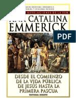 220722739-Visiones-y-Revelaciones-de-Ana-Catalina-Emmerich-Tomo-3-Desde-el-comienzo-de-la-vida-publica-de-Jesus-hasta-la-primera-Pascua.pdf