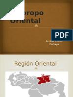 El Joropo Oriental en Venezuela