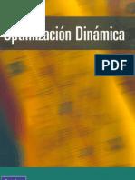 optimización dinamica