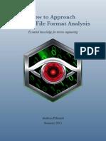 Binary File Format Analysis