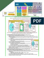 GCSE B2 - Topic 1 Building blocks of cells.pdf