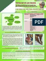 Sindroma Nefrotik Pada Kehamilan
