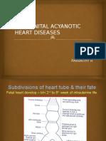 Acyanotic Heart Disease