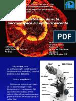 Prezentare microbiologie - microscopie
