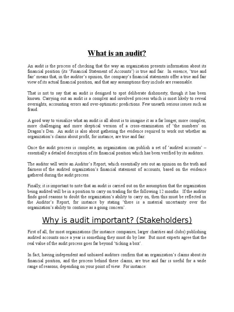 What is an audit 95